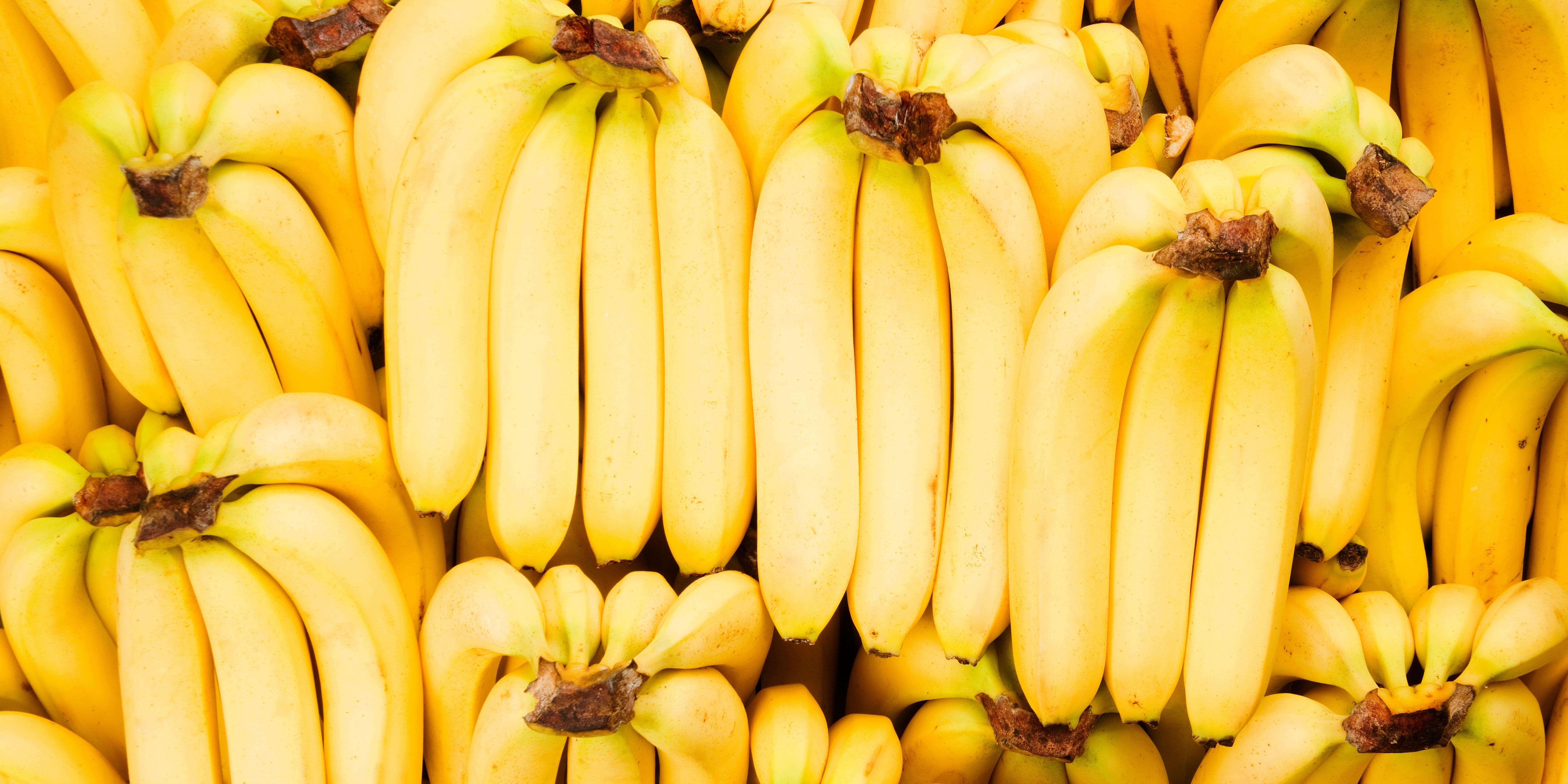 Fresh Bananas being stored